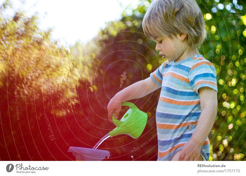 Sommerbeschäftigung Ferien & Urlaub & Reisen Mensch maskulin Kind Kleinkind Junge 1 1-3 Jahre Umwelt Natur Garten Gießkanne Spielen blond klein natürlich