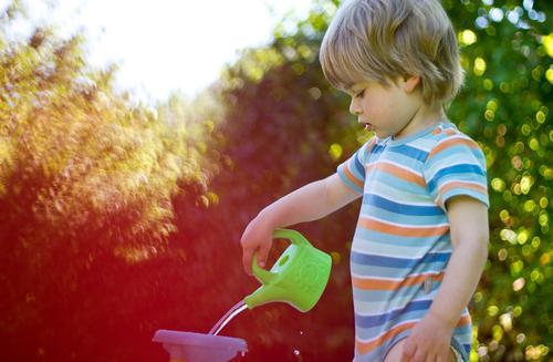 Sommerbeschäftigung Mensch Kind Natur Ferien & Urlaub & Reisen Umwelt natürlich Junge Spielen klein Garten Stimmung maskulin Zufriedenheit blond Lebensfreude
