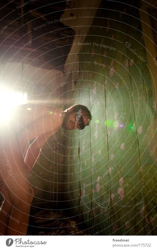 seerosenmüsli Farbfoto Gedeckte Farben mehrfarbig Innenaufnahme Textfreiraum rechts Textfreiraum oben Tag Licht Lichterscheinung Sonnenlicht Sonnenstrahlen