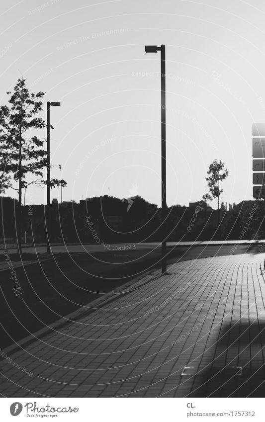 rückblick Umwelt Himmel Wolkenloser Himmel Schönes Wetter Verkehrswege Straßenverkehr Wege & Pfade Laternenpfahl Straßenbeleuchtung Schwarzweißfoto