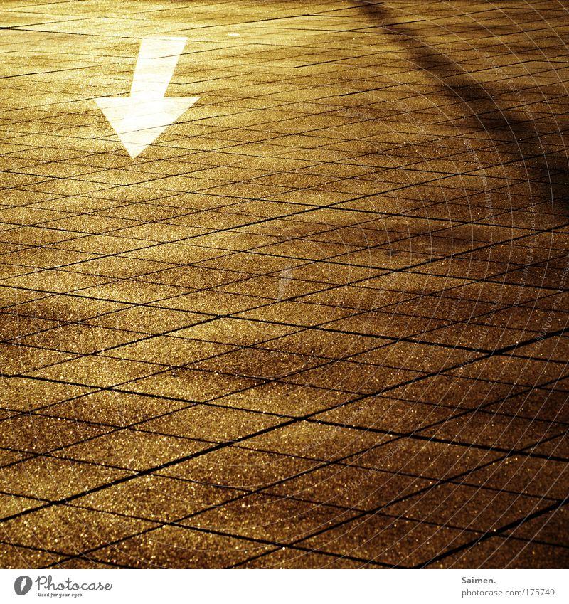 kurz vor dem ziel ist die stimmung am geilsten Sonne Stadt Ferne Straße Wege & Pfade Erfolg Pfeil Richtung Parkhaus zeigen Pflastersteine Atmosphäre Reifenspuren Steinplatten