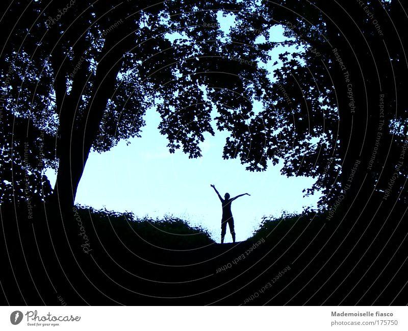 Silhuette im Wald vor hellem Hintergrund Sommer wandern 1 Mensch Landschaft Himmel Schönes Wetter Baum Sträucher Bewegung Ferne blau schwarz Lebensfreude Mut