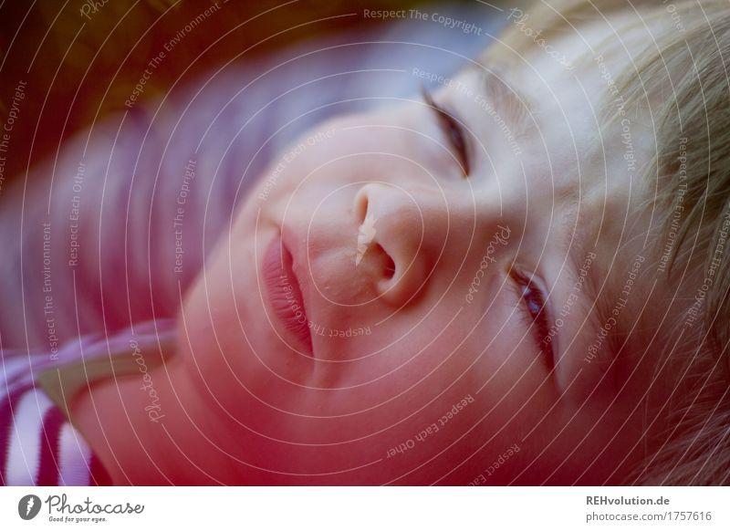 geblinzelt Mensch Kind Sommer Freude Gesicht lustig Junge klein Glück maskulin Zufriedenheit liegen Kindheit Fröhlichkeit Lächeln Lebensfreude
