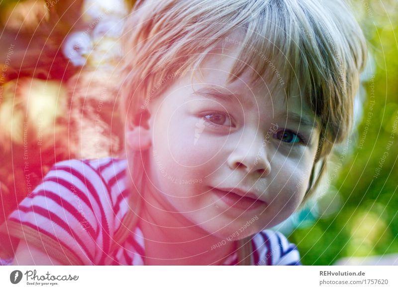 Sommerportrait Mensch Kind Natur grün rot Freude Gesicht Umwelt Junge klein Glück Garten maskulin Zufriedenheit Kindheit Fröhlichkeit