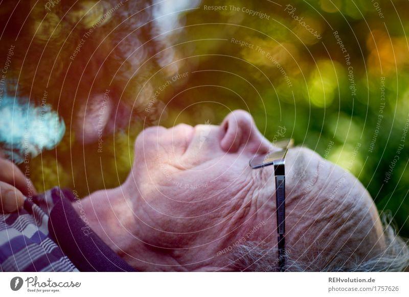 Senior liegt mit geschlossenen Augen Gesundheit Zufriedenheit Erholung ruhig maskulin Männlicher Senior Mann Großvater Leben 1 Mensch 60 und älter Umwelt Natur