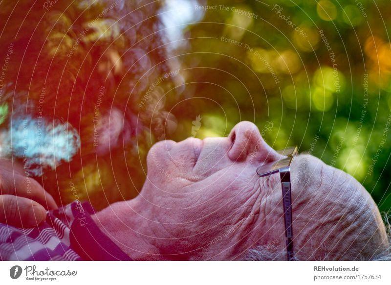 Rentnerglück Mensch Natur Mann alt grün Erholung ruhig Gesicht Erwachsene Umwelt Senior Gesundheit Garten außergewöhnlich Kopf maskulin