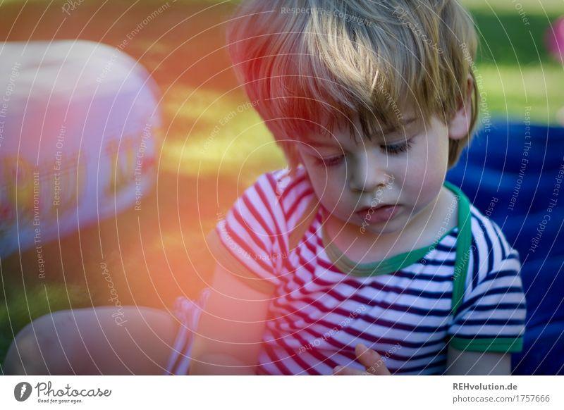 vertieft Freizeit & Hobby Spielen Mensch maskulin Kind Junge Gesicht 1 1-3 Jahre Kleinkind Umwelt Natur Garten T-Shirt beobachten sitzen außergewöhnlich klein