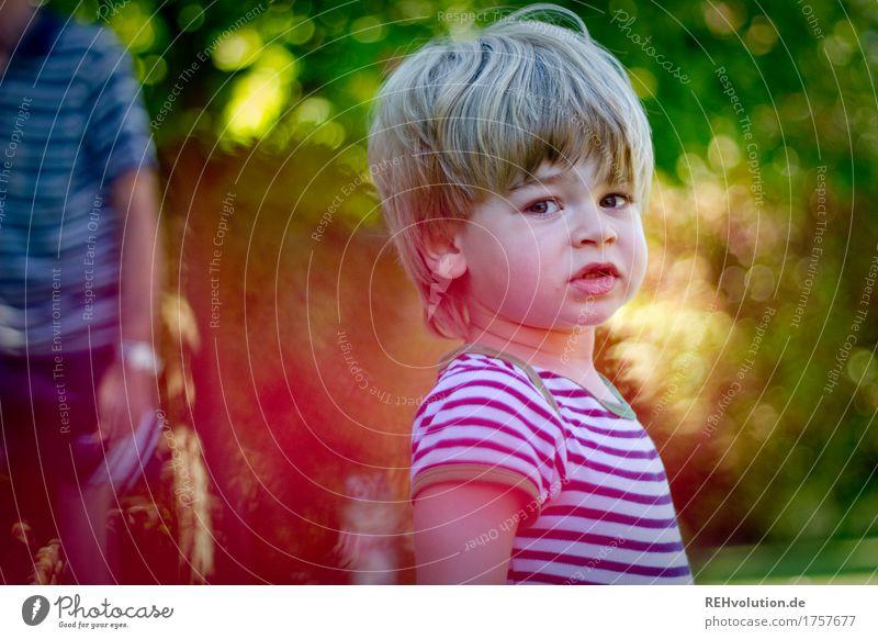 Sommerportrait Mensch Kind Natur Pflanze Sommer grün Gesicht Umwelt Leben natürlich Junge klein Garten Haare & Frisuren maskulin Kindheit