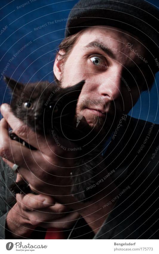 Bei Nacht und Nebel Mensch Junger Mann Jugendliche 1 Nachthimmel Mond Haustier Katze Tier niedlich Schutz Schwäche Nachtaufnahme Katzenbaby Katzenauge