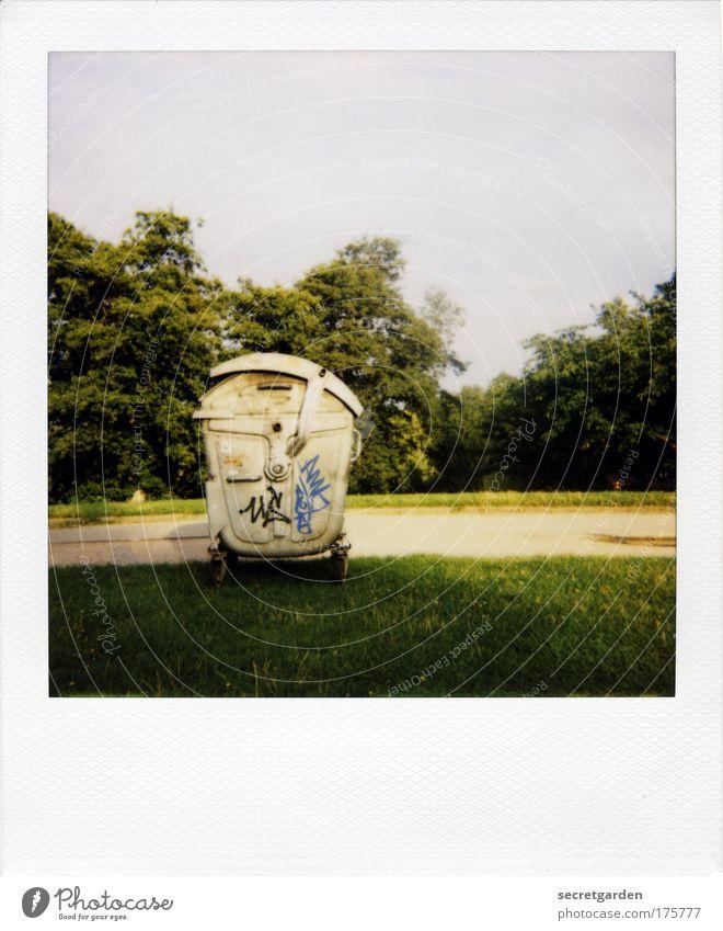 trashiges polaroid. Natur grün Umwelt gelb Wiese Graffiti Gras Wege & Pfade Park Ordnung einzigartig Schönes Wetter Sauberkeit Polaroid Zeichen Müll