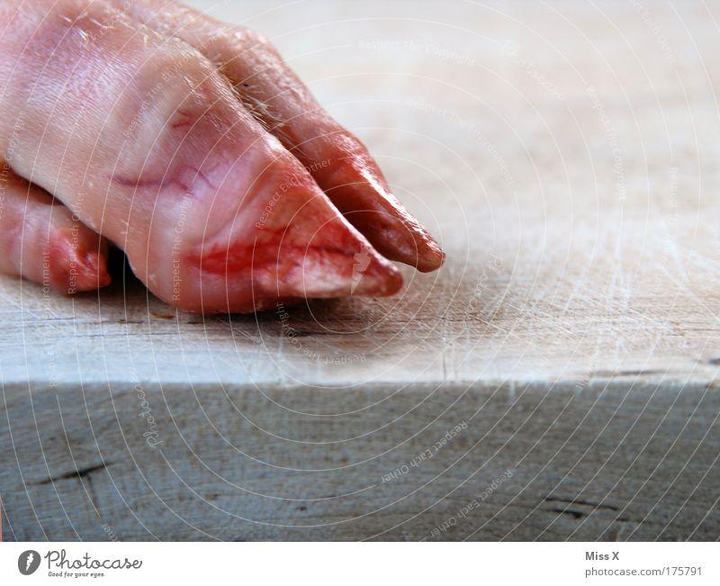 Welches Schweinderl hättens denn gern Hand Tier Tod Handwerk Lebensmittel Fuß Tierfuß Ernährung Finger Tierhaut Bauernhof Todesangst skurril Bioprodukte Fleisch