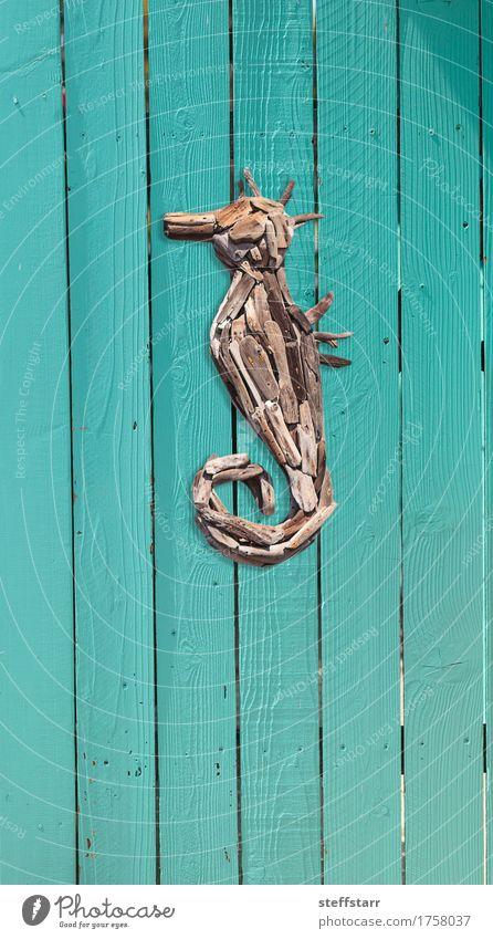 Holz Treibholz Seepferdchen Dekor blau Sommer Haus Strand Küste braun türkis Aquarium Traumhaus