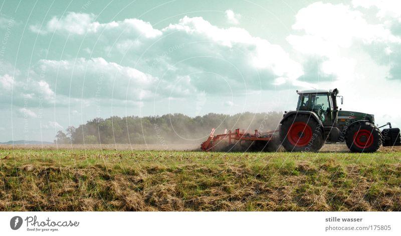 Pflügen Getreide Ernährung Erntedankfest Beruf Landwirt Maschine Motor Natur Landschaft Himmel Wolken Nutzpflanze Feld Dorf Traktor Arbeitsbekleidung