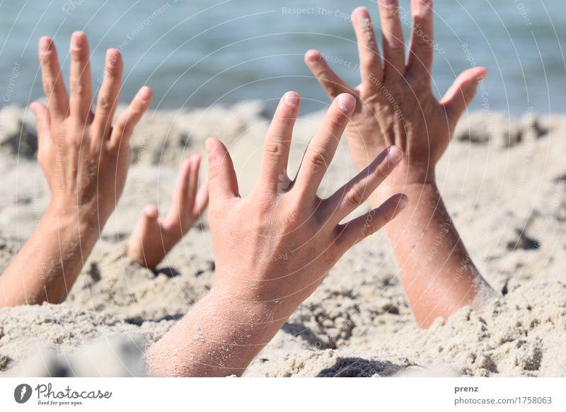 Handarbeit Mensch Jugendliche blau Sommer schön Hand Meer Landschaft Strand 18-30 Jahre Erwachsene Frühling Küste feminin Sand maskulin