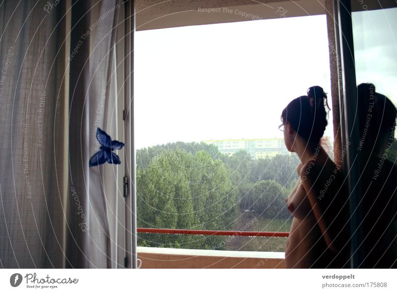 Mensch Jugendliche Wasser schön Leben feminin Erotik Fenster nackt Gefühle Traurigkeit träumen Denken Stimmung Regen