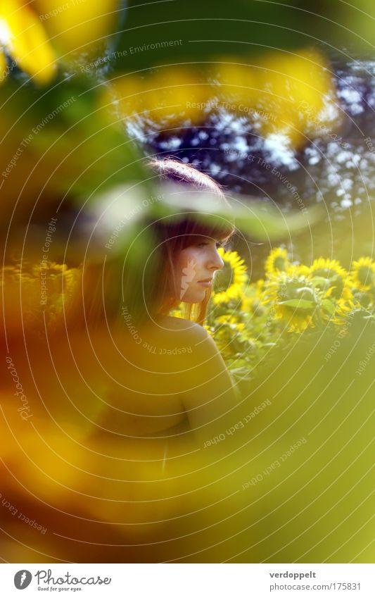 Mensch Natur Jugendliche grün schön Pflanze Sonne Sommer Blume gelb feminin Landschaft Wärme Stimmung hell natürlich