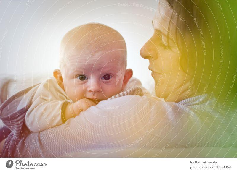 Guckguck Mensch Gesicht Erwachsene Liebe Gesundheit Familie & Verwandtschaft klein Glück Zusammensein Wohnung Häusliches Leben Zufriedenheit Kindheit