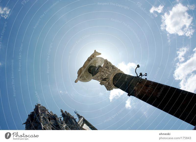 Wölfin Himmel blau Wolken heiß Italien Skulptur Dom Sehenswürdigkeit Toskana Wolf Siena