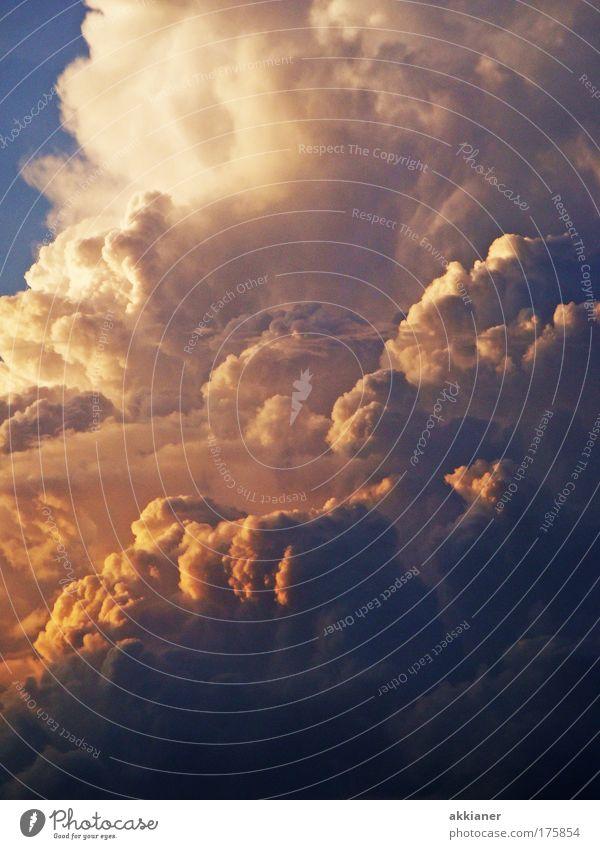 glühender Himmel Farbfoto mehrfarbig Außenaufnahme Menschenleer Tag Abend Sonnenstrahlen Sonnenaufgang Sonnenuntergang Umwelt Natur Wolken Sommer Herbst Klima