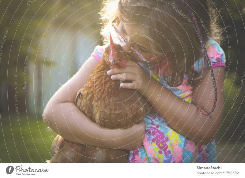 Grenzenlose Liebe Kind Mädchen Kindheit 1 Mensch 3-8 Jahre Tier Haustier Nutztier Vogel Flügel berühren entdecken genießen Küssen leuchten träumen Umarmen frei