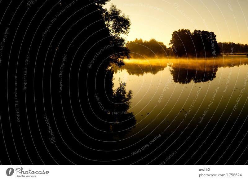 Seenebel Umwelt Landschaft Pflanze Luft Wasser Wolkenloser Himmel Horizont Schönes Wetter Nebel Baum Sträucher Seeufer Insel Teich leuchten trösten ruhig