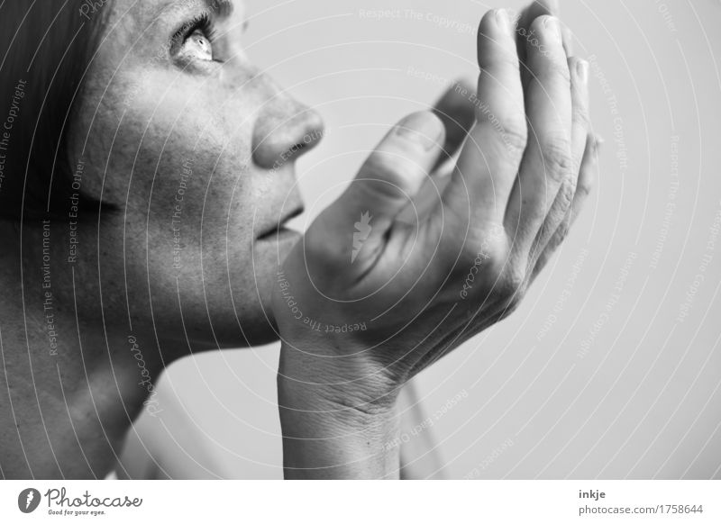 Hoffnung auf Nächstenliebe Frau Erwachsene Leben Gesicht Hand 1 Mensch 30-45 Jahre Blick Gefühle Stimmung Mitgefühl Güte Menschlichkeit Hilfsbereitschaft
