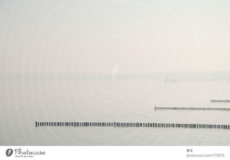 Küstennebel Wasser Himmel Meer blau Winter gelb grau See Landschaft Küste rosa groß Horizont Bucht Seeufer Ostsee