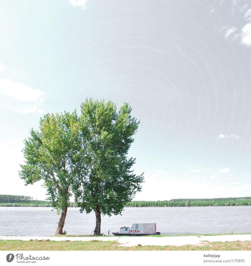 donaudampfer Wasser Baum Pflanze Ferien & Urlaub & Reisen Ferne Wiese Freiheit Landschaft Küste Freizeit & Hobby Ausflug Verkehr Tourismus Klima Lifestyle Hafen