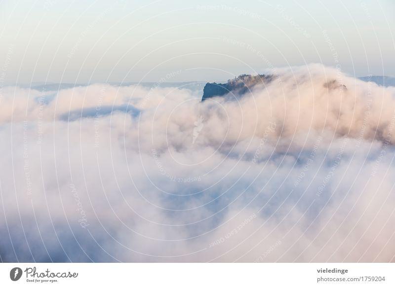 Lilienstein im Nebelmeer bei Sonnenaufgang Ferien & Urlaub & Reisen Tourismus Berge u. Gebirge wandern Natur Landschaft Wolkenloser Himmel Sonnenuntergang