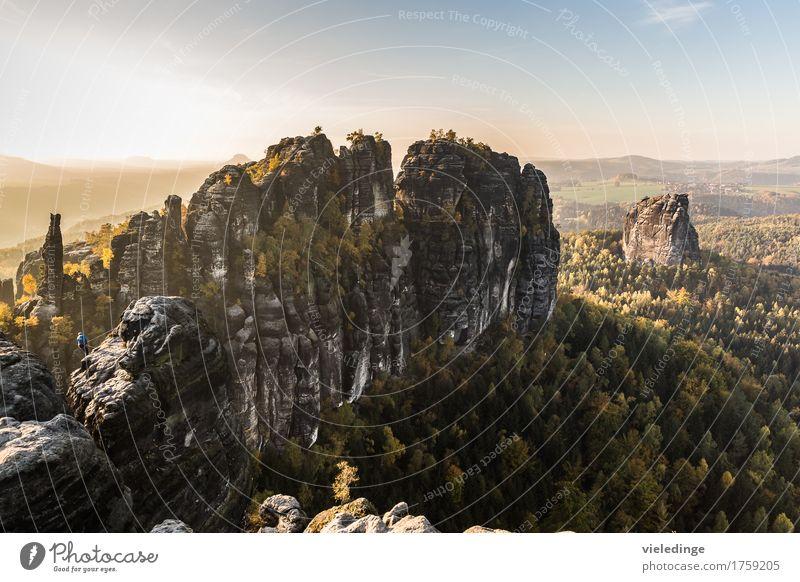 Schrammsteine und Falkenstein im Licht der Abendsonne Ferien & Urlaub & Reisen Tourismus Ausflug Freiheit Berge u. Gebirge wandern Klettern Natur Landschaft
