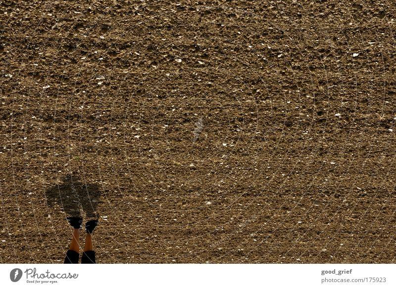 sie kommen! Mensch Mann Erwachsene Junge Kunst braun Feld maskulin stehen 18-30 Jahre Ackerbau Landwirtschaft
