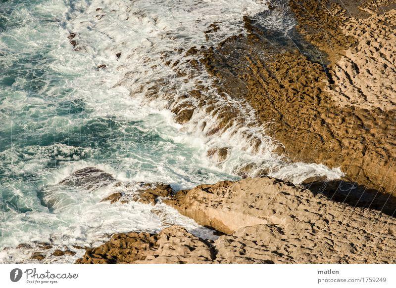 Begegnung Natur Wasser Sommer Schönes Wetter Felsen Wellen Küste Riff Meer Zusammensein blau braun weiß Farbfoto Außenaufnahme abstrakt Muster