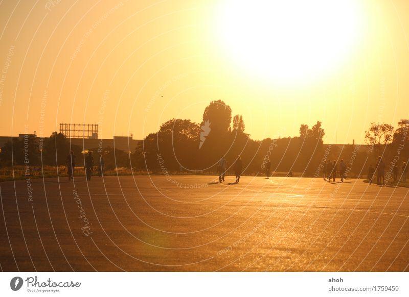 Tempelhofer Feld #4 Zufriedenheit Freizeit & Hobby Sommer Sonne Feierabend Leben Umwelt Landschaft Sonnenaufgang Sonnenuntergang Sonnenlicht Park Wiese Berlin