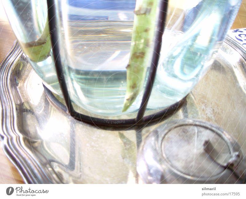 Vase mit Tablett Querformat Silbertablett Reflexion & Spiegelung Tisch Aschenbecher Häusliches Leben Wasser