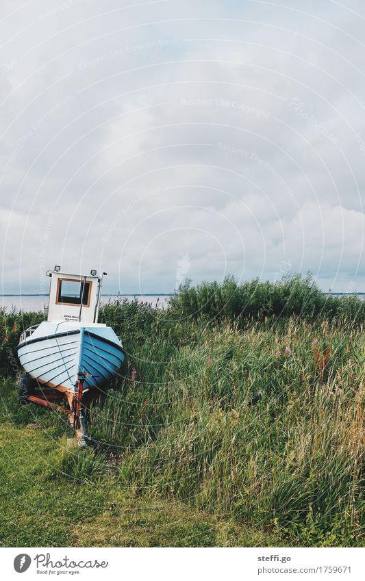 Sophie-Amalie Natur alt Einsamkeit dunkel kalt Küste Wasserfahrzeug Freizeit & Hobby ästhetisch retro Seeufer Nordsee Schifffahrt Angeln Fischereiwirtschaft