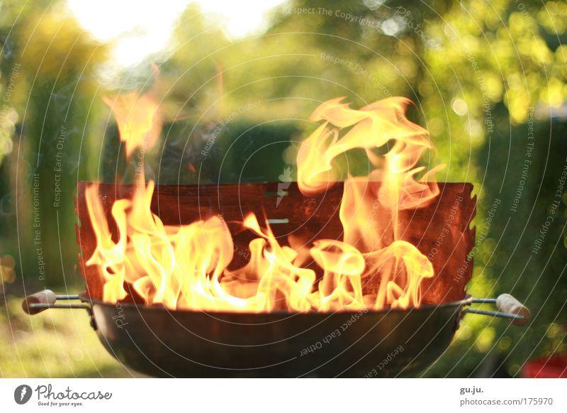 DER FLAMMENDE GRILL Natur Pflanze Sonne Ferien & Urlaub & Reisen Sommer Ernährung Garten Kochen & Garen & Backen orange Feste & Feiern Freizeit & Hobby Ausflug