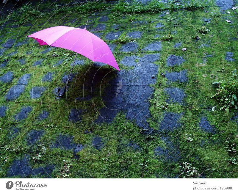 hingelegt grün Freude Einsamkeit Farbe Wetter Zufriedenheit rosa liegen einzigartig Fabrik Kitsch Idylle Regenschirm fremd Schutz Farn