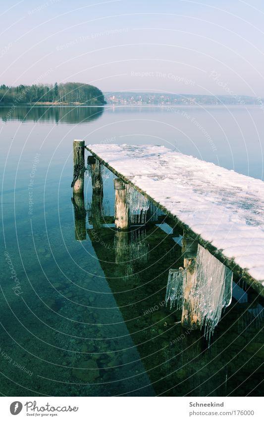 Idylle am kalten See Natur Himmel Baum blau Winter ruhig Einsamkeit Ferne kalt Schnee Erholung Freiheit träumen Landschaft Eis