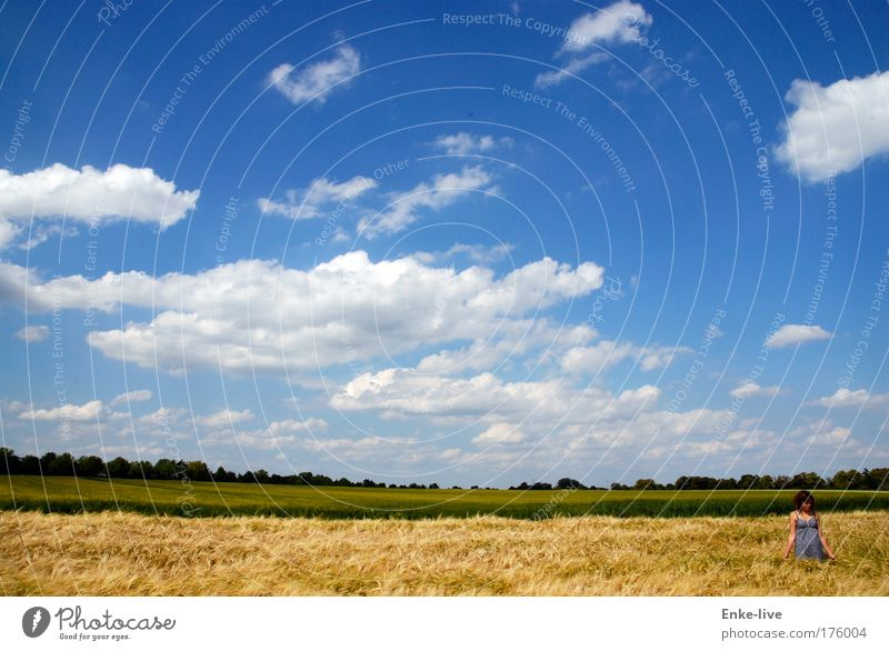 <beautiful day> Himmel Jugendliche Sommer Wolken Einsamkeit Umwelt Landschaft Freiheit Gras Luft Stimmung Wetter Zufriedenheit Feld warten Klima