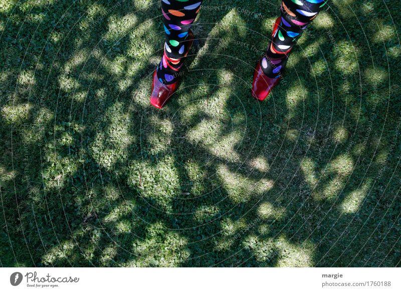 Punktlandung feminin Frau Erwachsene Beine Fuß 1 Mensch Natur Erde Sonnenlicht Sommer Pflanze Baum Grünpflanze Wiese Schuhe mehrfarbig grün rot Strümpfe Kreis