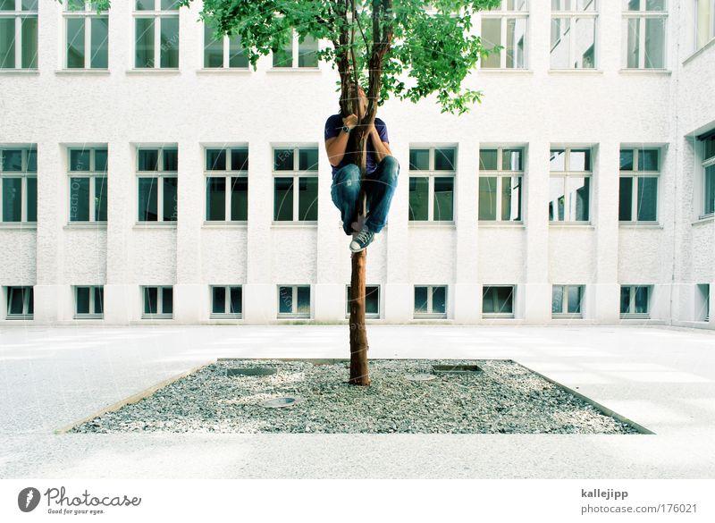 stammbaum Mensch Natur Mann Hand Stadt Baum Pflanze Haus Erwachsene Umwelt Fenster Wand Mauer Beine Park Arme