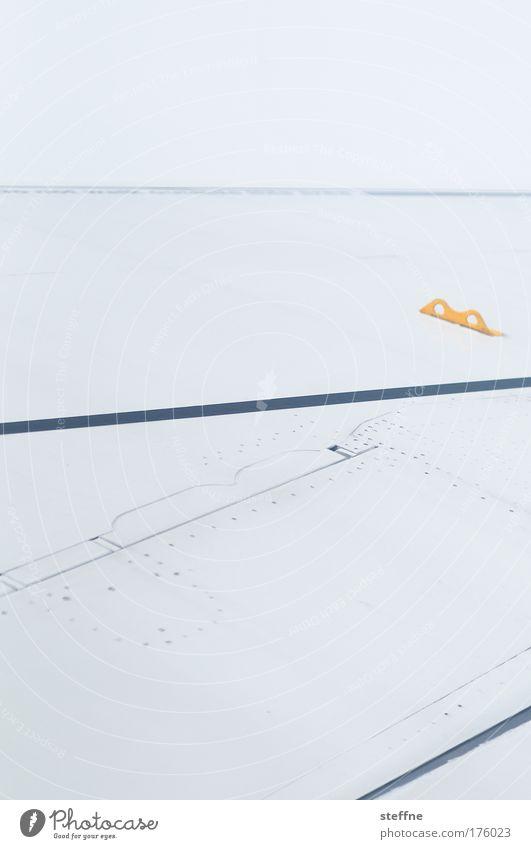 Schwingen Ferien & Urlaub & Reisen Flugzeug fliegen Tragfläche Pilot Passagierflugzeug