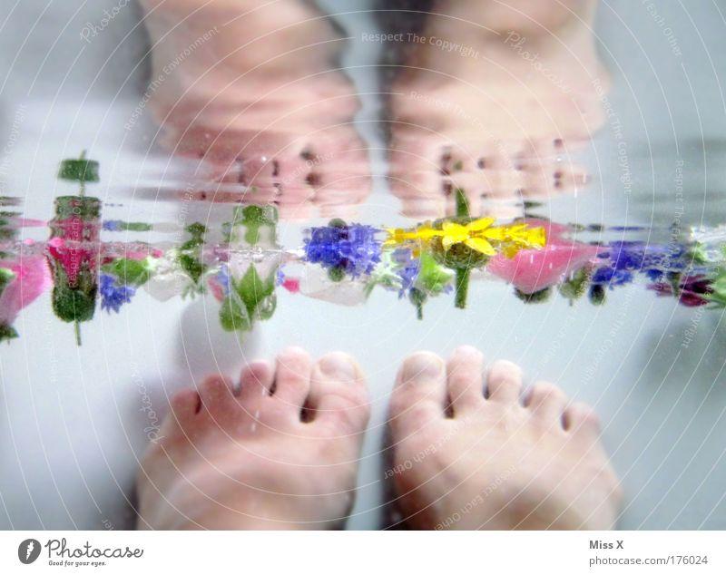 Die Meermaid II Mensch schön Blume Pflanze ruhig Erholung feminin Gefühle Wasser Blüte Unterwasseraufnahme Fuß Beine Wellen Haut
