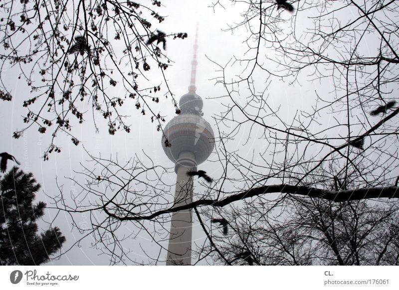 november Natur Landschaft Himmel Wolken Herbst schlechtes Wetter Nebel Schnee Hauptstadt Turm Gebäude Sehenswürdigkeit Wahrzeichen Sehnsucht Fernweh Berlin