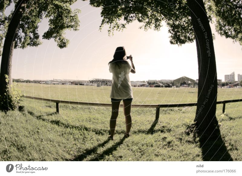 The sunshine sessions 09 Mensch Jugendliche Baum Freude Erwachsene Erholung feminin Landschaft Park Freizeit & Hobby 18-30 Jahre Junge Frau Fotografieren