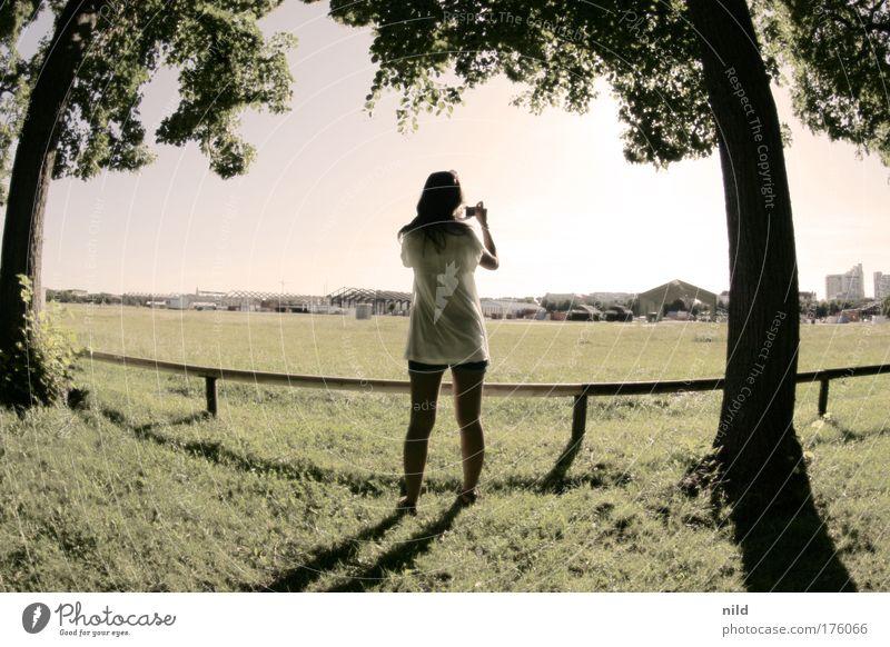 The sunshine sessions 09 Mensch Jugendliche Baum Freude Erwachsene Erholung feminin Landschaft Park Freizeit & Hobby 18-30 Jahre Junge Frau Fotografieren Frau Fischauge