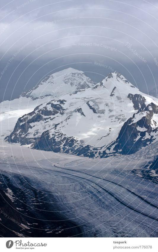 Aletschgletscher Natur Pflanze Sommer Wolken Erholung kalt Berge u. Gebirge Landschaft Umwelt Wetter Felsen Tourismus ästhetisch Alpen beobachten fantastisch