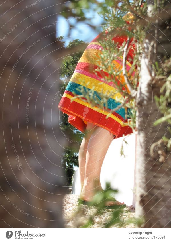 mauerblümchen Frau Mensch Erholung feminin Fuß Beine Erwachsene