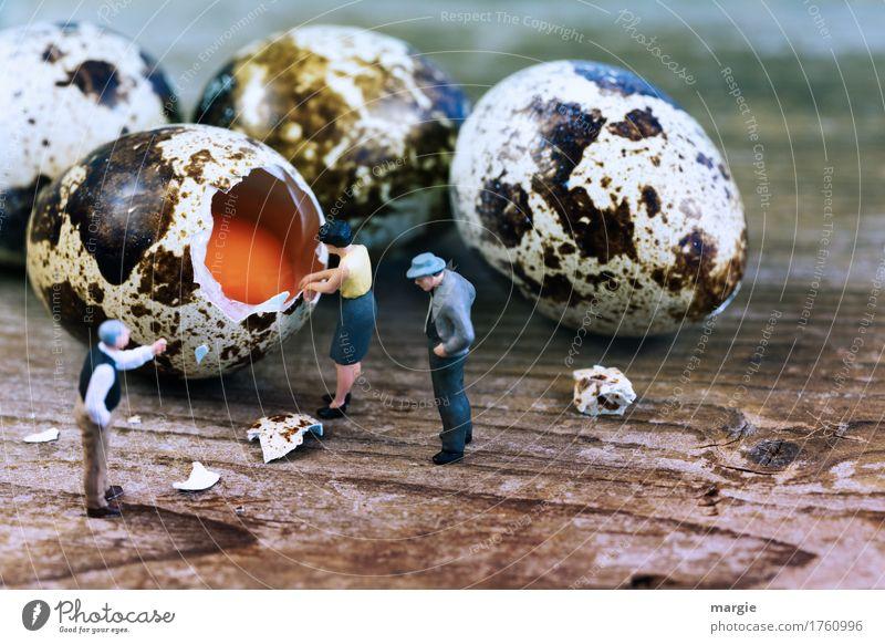 Miniwelten - So schälen Sie ein Ei Mensch Frau Mann Erwachsene feminin Lebensmittel braun maskulin Bioprodukte Frühstück