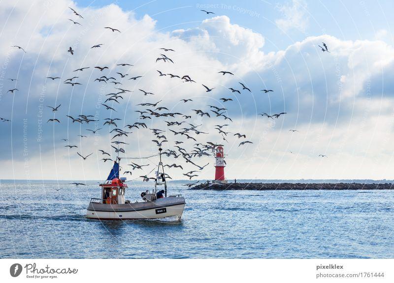 Fischerboot mit Möwen Fischereiwirtschaft Angeln Natur Landschaft Wasser Wolken Horizont Wetter Küste Ostsee Meer Warnemünde Rostock Deutschland Fischerdorf